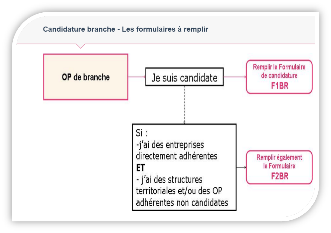 candidature branche