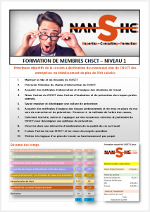 Brochure CHSCT N1 Plus de 300